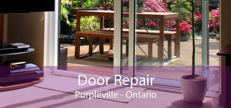 Door Repair Purpleville - Ontario